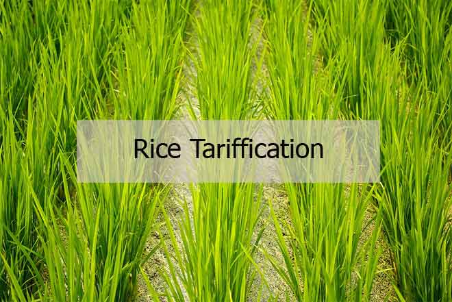 What is Rice Tariffication law