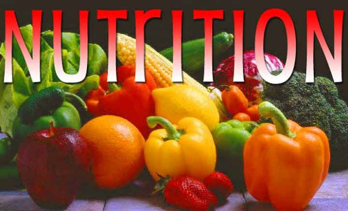 What Is The Importance Of Nutrition