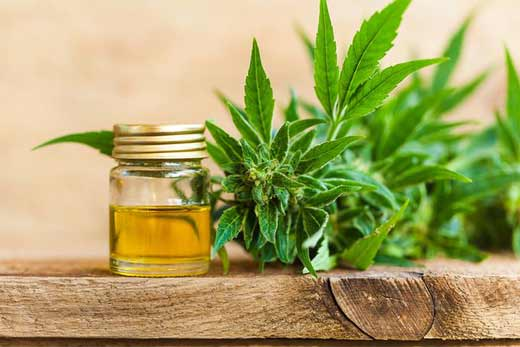 Methods for knowing if the CBD oil is pure