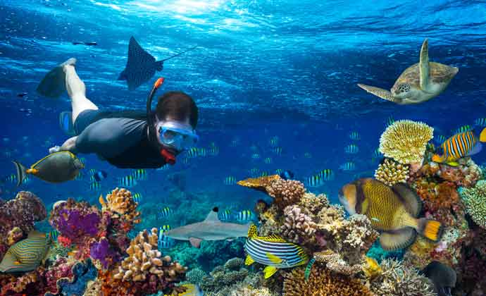 how deep is snorkeling