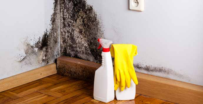 How to Clean a Really Dirty House
