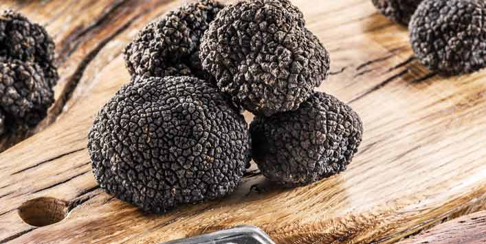 What is The Difference Between White And Black Truffle