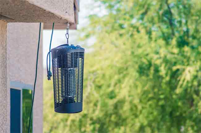 The Working Procedures of a Bug Zapper